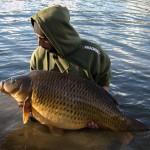 Carp Fishing – Winter Gold – Virgil Bayle