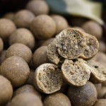 Carp Fishing – Why XXX boilies?