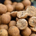 ***Carp Fishing Bait*** Live System Boilies – Ian Moore