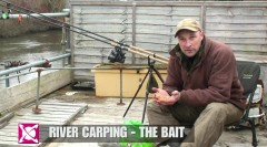 River Carping – The Baits