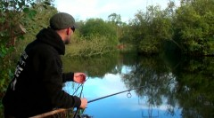 Casting near snags
