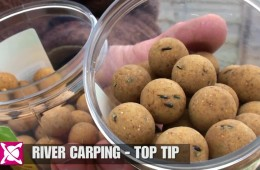 River Carping – Hard Hookbaits