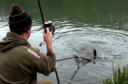 Dan Stacey at Milton Abbas Lake